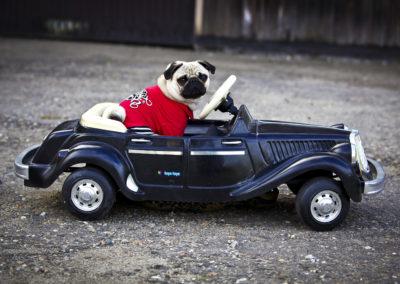 Vito in zijn Mercedes